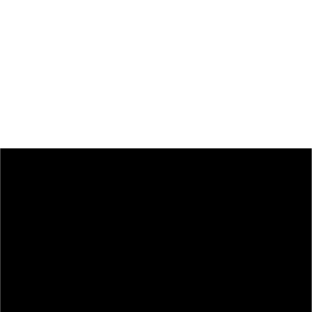 Balta blizgi + juodos kojos